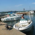 Le port de l'ile St Honorat