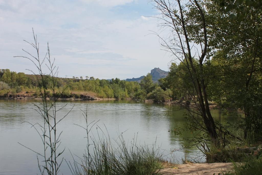 Proche du Rocher de Roquebrune/Argens