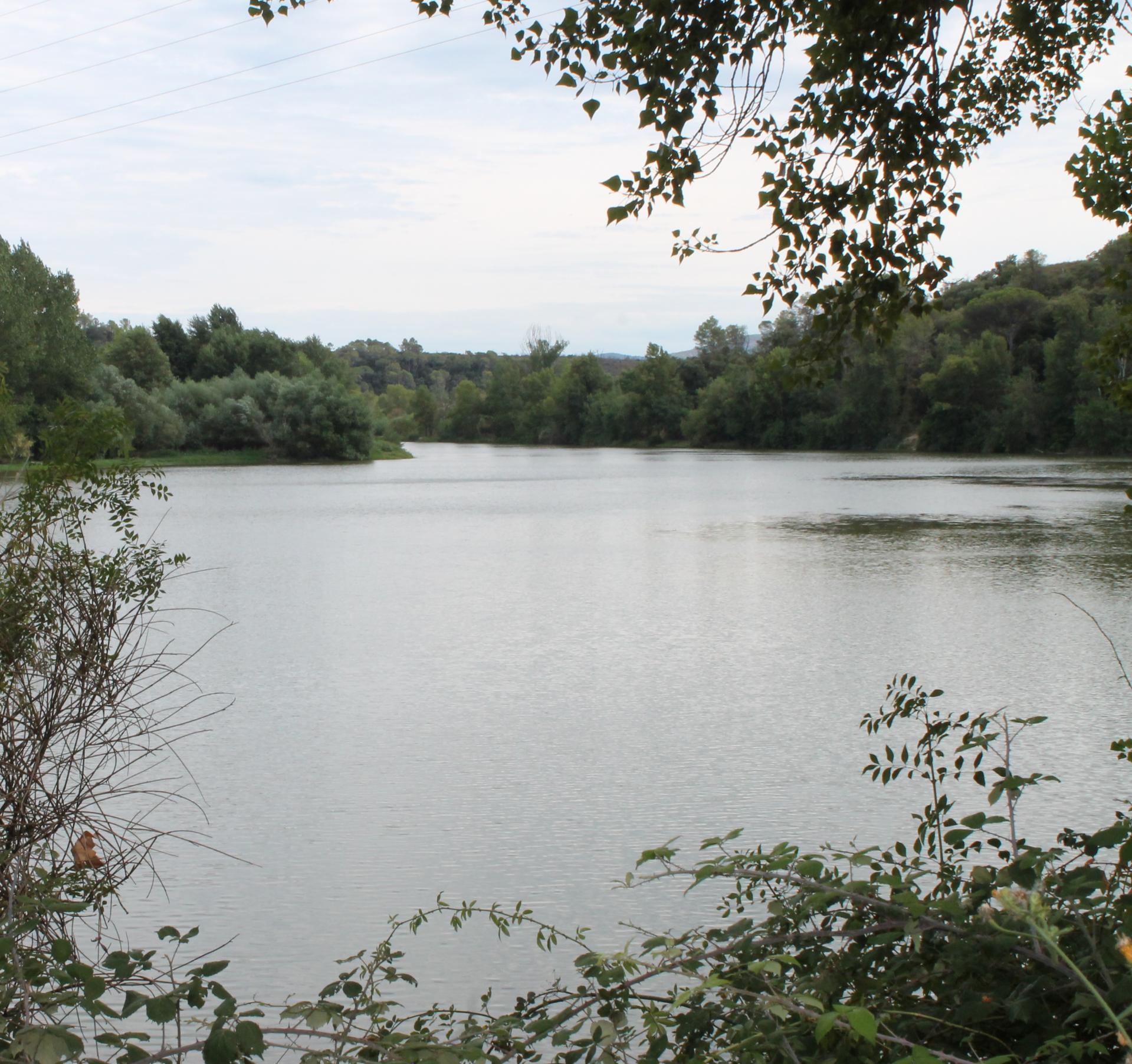Un étang non connu des Touristes, Le Muy
